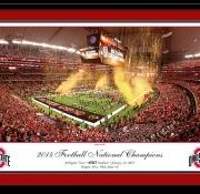 Ohio State National Championship 2015